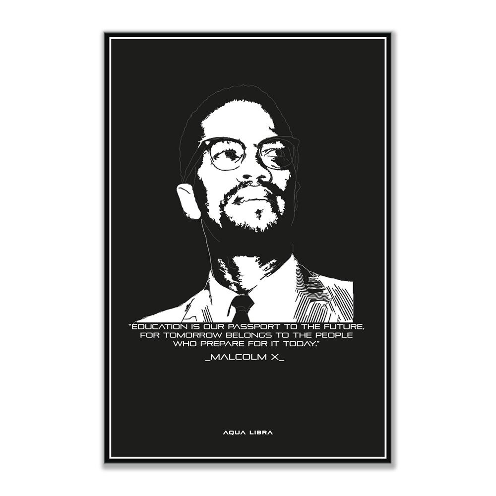 Dit betreft de afbeelding van de Malcolm X illustratie met quote van deze inspirerende legende.